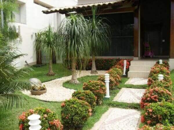 Tipos de plantas para jardim pequeno