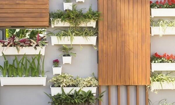 Tipos de plantas para jardim vertical na parede