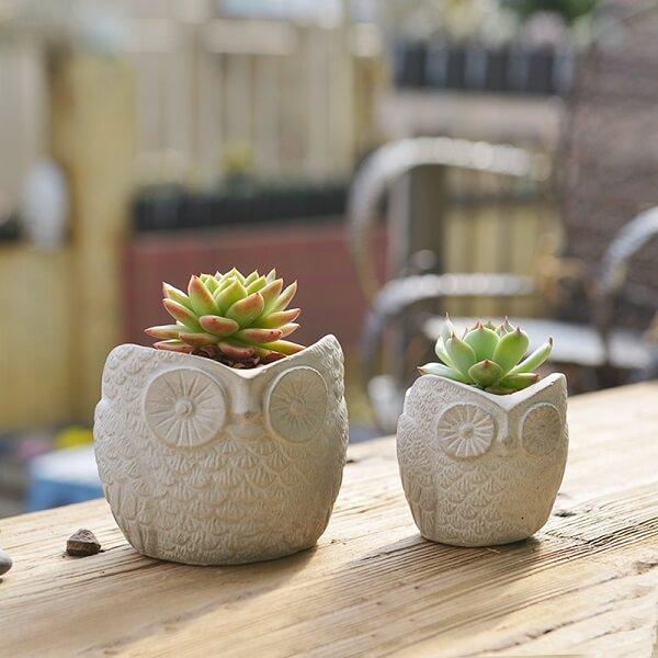 Como fazer vaso de cimento coruja