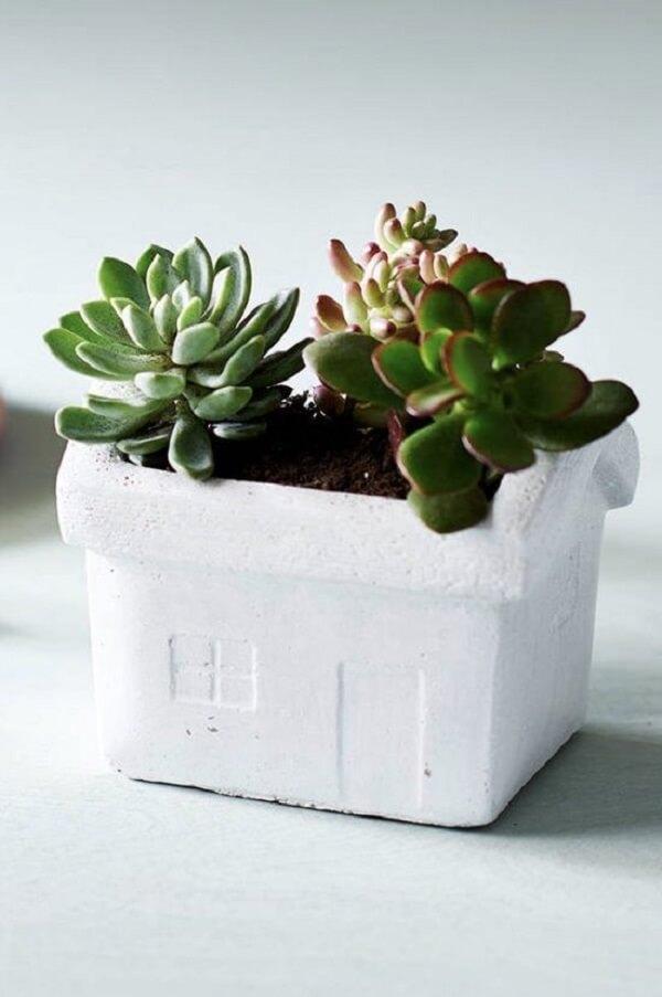 Como fazer vaso de cimento para as suculentas