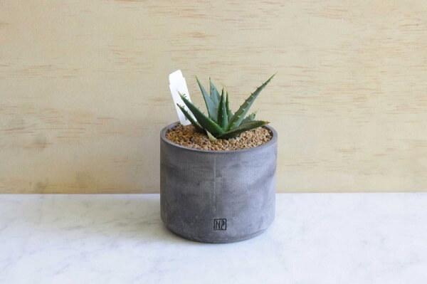 Como fazer vaso de cimento para colocar plantinhas