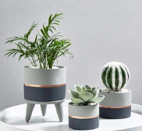Cultive plantas de pequeno porte no vaso de cimento