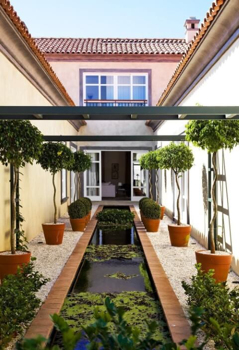 Jardim externo com plantas aquáticas em espelho d'água Projeto de Dado Castello Branco