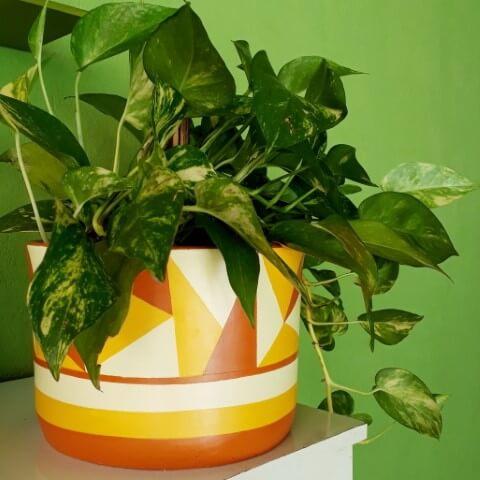 Vasos de cerâmica com padrão geométrico Foto de Curti Ateliê