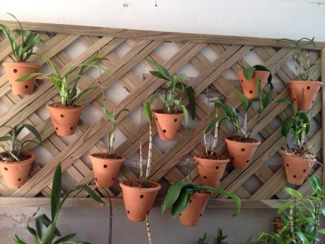 Vasos de cerâmica em jardim vertical Foto de Quintal da Ana Pellegrine