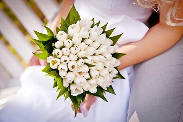 As tulipas brancas são ótimas para formar um buquê