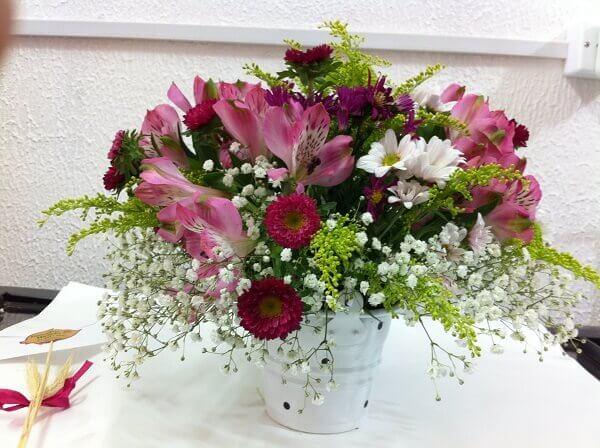Flores do campo com diferentes espécies