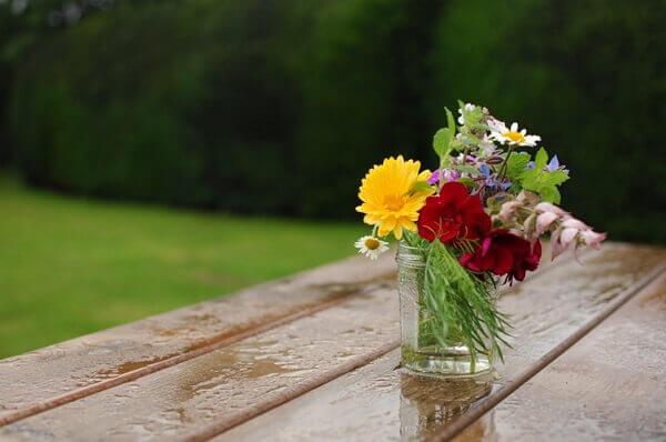 Flores do campo decora área externa