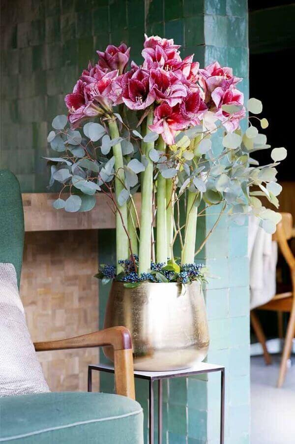 Flores do campo lírio
