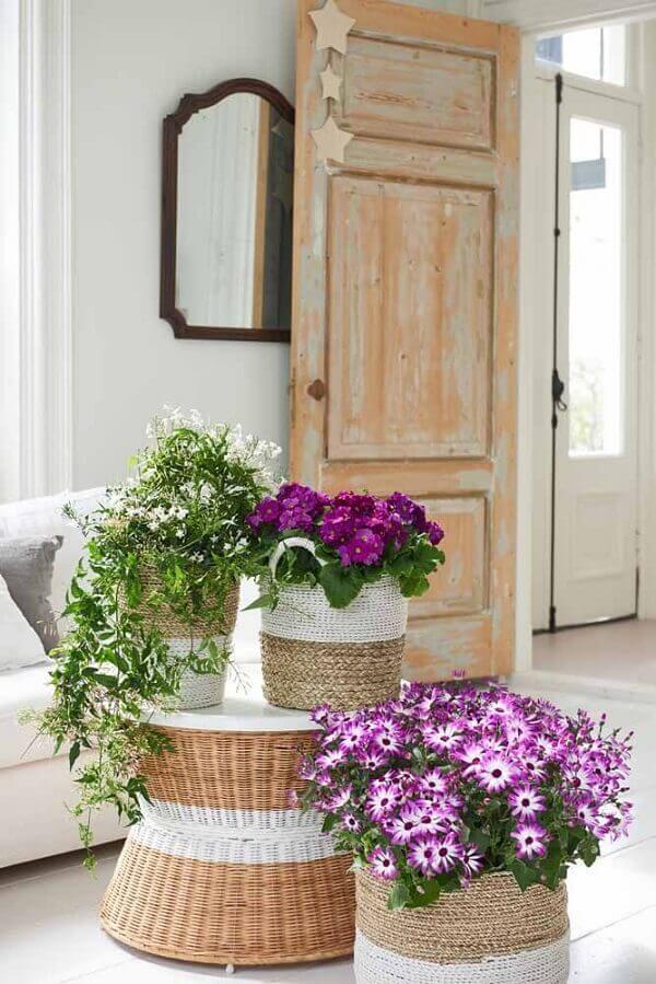 Flores do campo violetas diversas