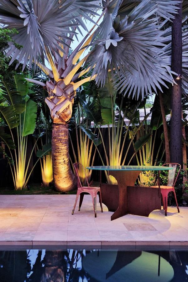Iluminação de jardim especial deixa a Palmeira Azul ainda mais realçada no jardim