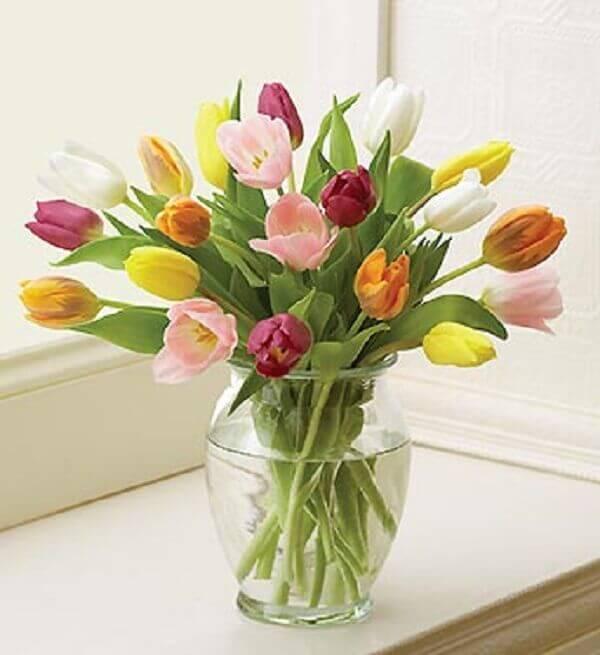Tulipa em vaso transparente