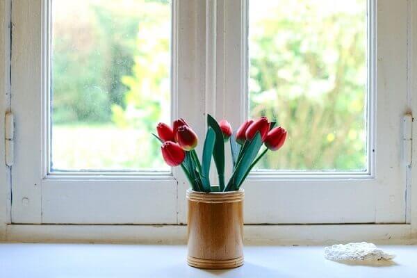 Tulipa vermelha na janela