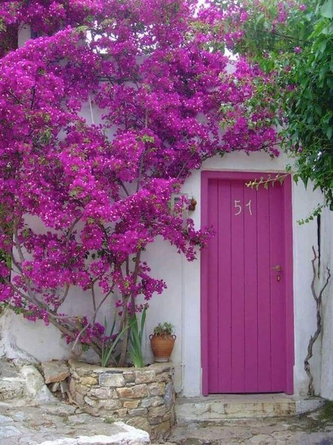 porta de entrada de madeira pintada de rosa Foto Gary Haygood