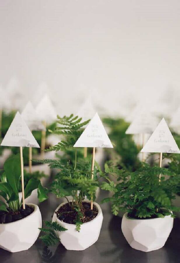 vasinhos de plantas para lembrancinha de chá de bebê Foto Baby Shoes