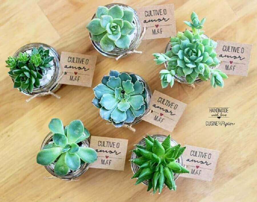 vasinhos de suculentas para decoração de noivado simples Foto Cuisine et Papier