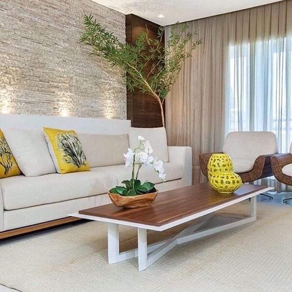 As plantas para sala como o bambu mosso tem função escultural