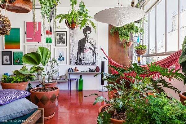 As plantas para sala de apartamento transformam o ambiente