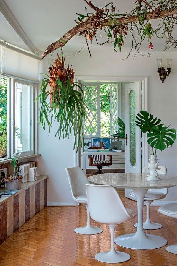 As plantas para sala deixam o ambiente mais fresco