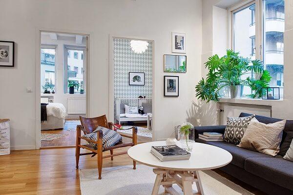 As plantas para sala em vasos podem ser colocados em janelas