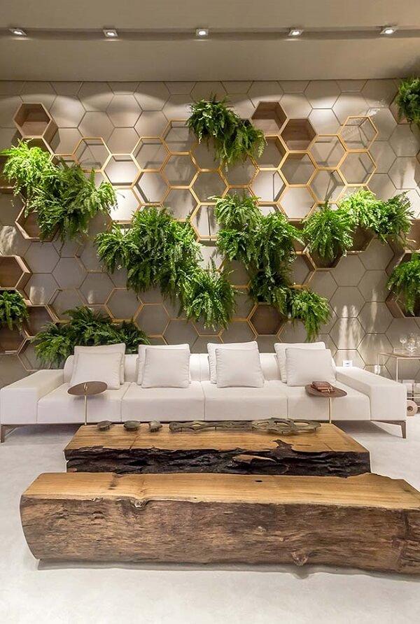 As plantas para sala foram colocadas em estrutura de madeira