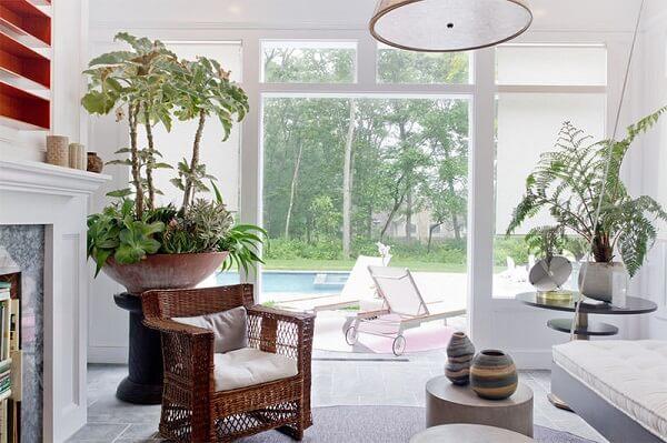 As plantas para sala formam o grande arranjo em vaso tipo bacia
