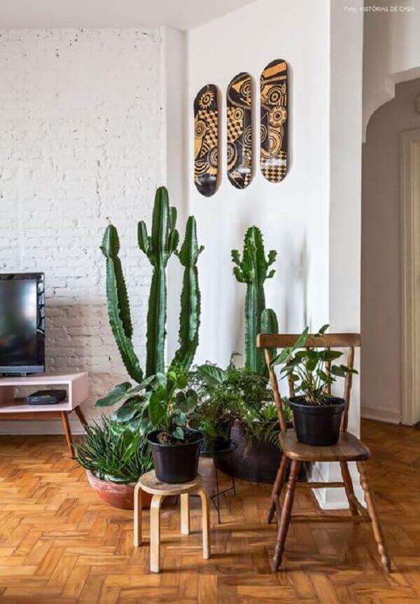 As plantas para sala transformam o canto do ambiente em um jardim de inverno