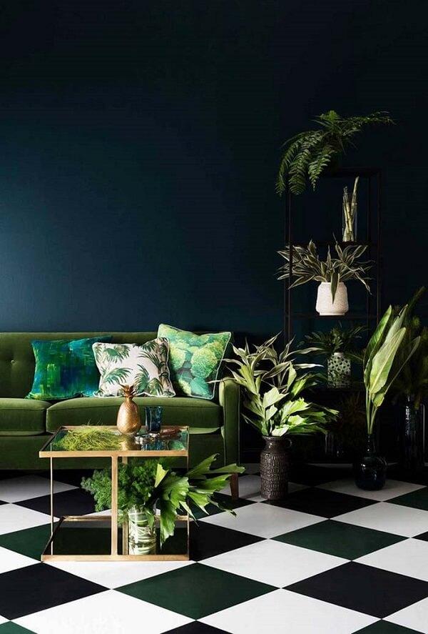 As plantas para sala trazem o frescor da mata para dentro do ambiente