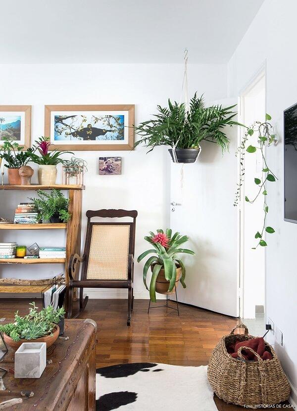 Em apartamento paqueno as plantas para sala podem ser coloca54 As plantas para sala levam frescor ao ambiente decorado Fonte Pinterestdas em estante,suportes ou penduradas