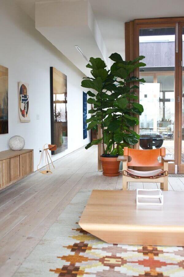 Fycus lirata são plantas para sala com grande apelo visual