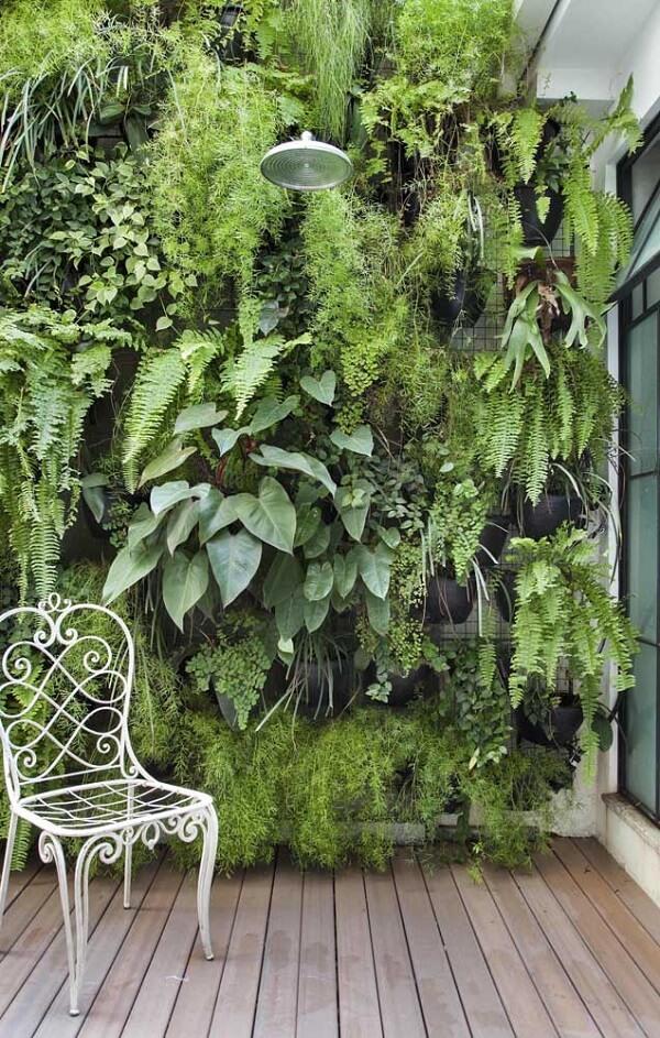 Jardim vertical com samambaias e plantas diversas