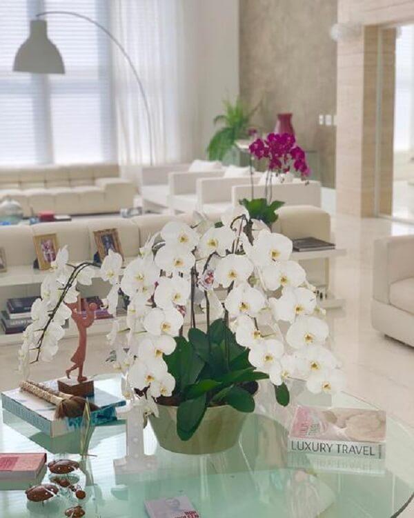 Mesa com orquídeas na sala da Ana Hickmann