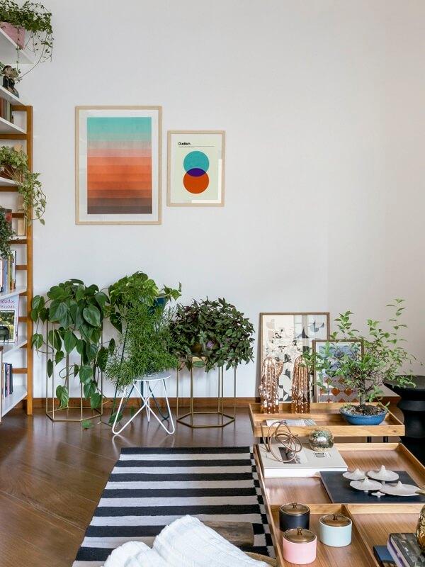 No apartamento as plantas para sala formam um pequeno jardim