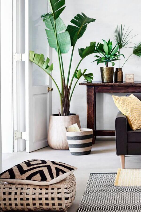 Os vasos cerâmicos com plantas para sala decoram o ambiente