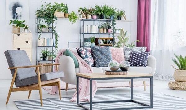 Plantas para sala complementam a decoração moderna