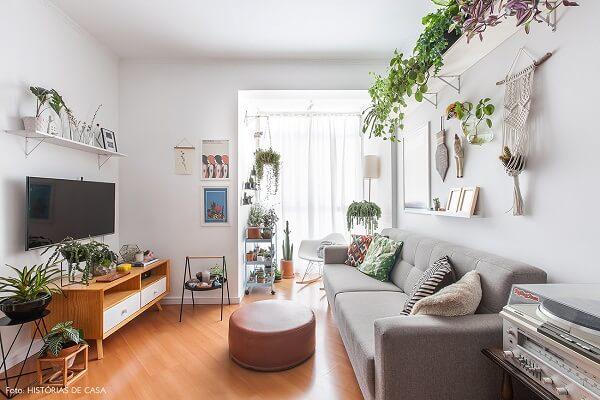 Plantas para sala de apartamento pequeno