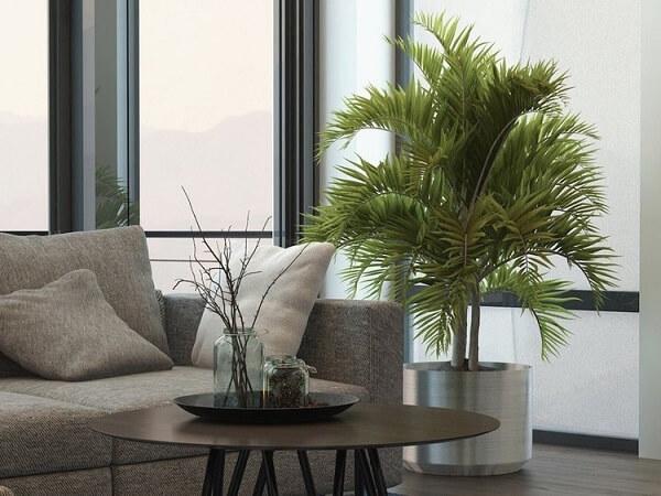 Plantas para sala em cachepô metálico