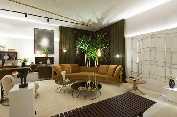 Plantas para sala iluminadas