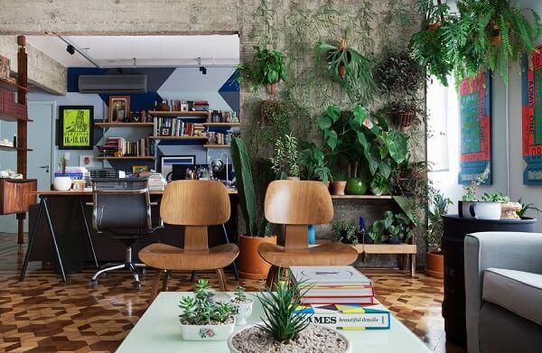 Plantas para sala levam a natureza para dentro de casa