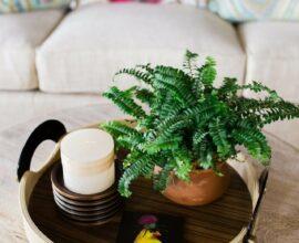 Que tal incluir um vaso sobre a mesa de centro da sala? Fonte: Haus Styling