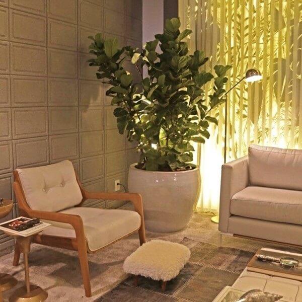 Vasos decorativos com plantas para sala