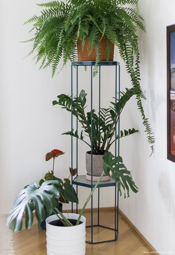 plantas para sala em suportes