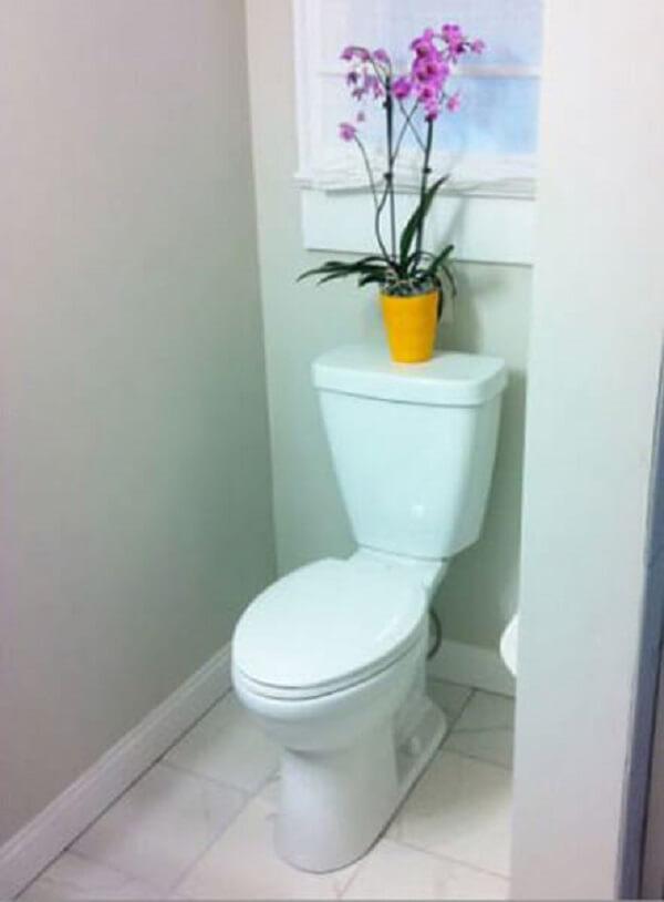 As plantas para banheiro pequeno trazem alegria ao ambiente