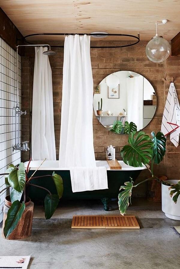 As plantas para banheiro podem ser com folhas grandes