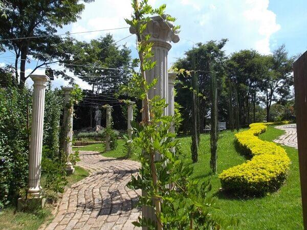 Pingo de ouro enfeita o jardim