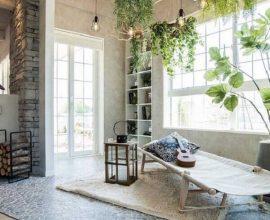 Plantas grandes para ter dentro de casas requintada