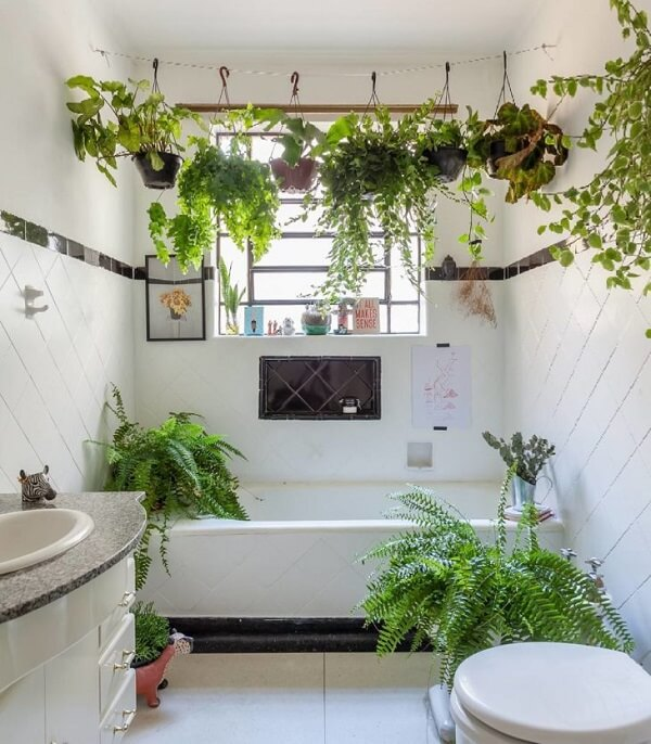 Plantas para banheiro clean
