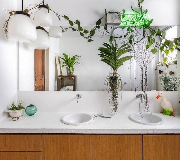 Plantas para banheiro delicado