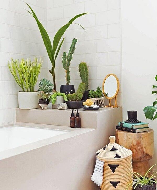 Plantas para banheiro grande