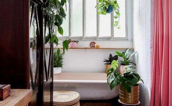 Plantas para banheiro sofisticados